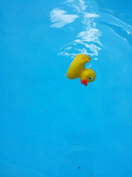 rubber ducky painting – ria hills